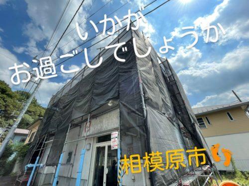 line_20137327896866633